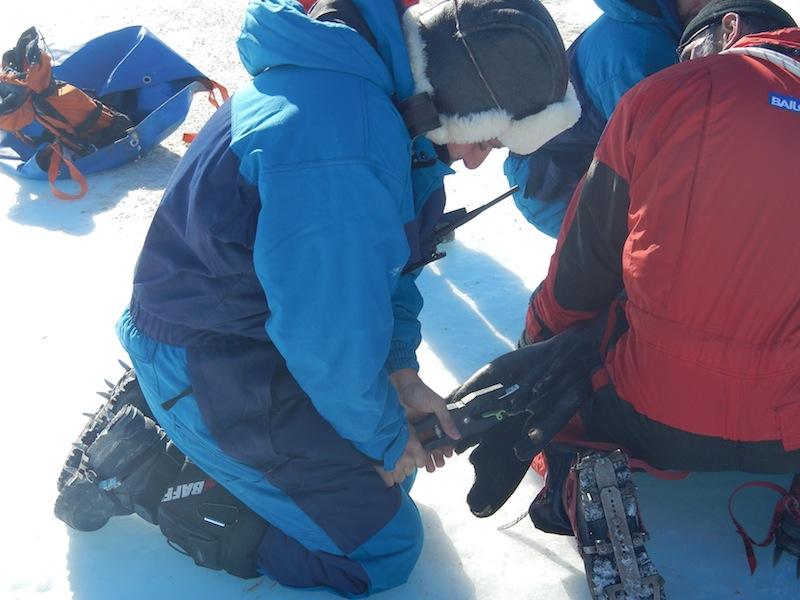 Un ricercatore sta applicando una targhetta numerata sulle pinne caudali della foca. Copyright PNRA.
